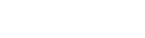 Store IT Systems